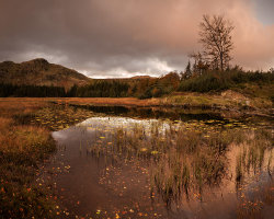 Harrop Tarn dawn by Adrian Gidney [Joint 1st Place]