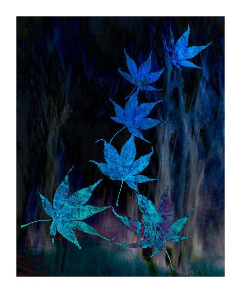 Leafy Blues by Ann Healey 3rd Place