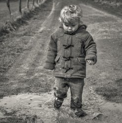 Not the puddle by Jason Willis - Highly Commended