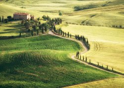 Pienza view by Janice Carrol - Commended