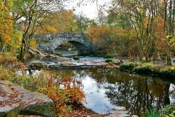 Skelwith Bridge by Ann Draper - Commended