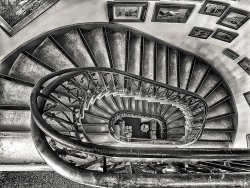 Spiral Stairs by Ian Cutts • Highly Commended
