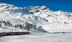 Train to St Moritz by Ann Draper 2nd Place