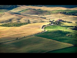 Tuscan Gold by Janice Carroll - Highly Commended