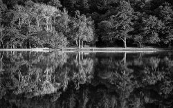 Waters edge by Adrian Gidney • Highly Commended