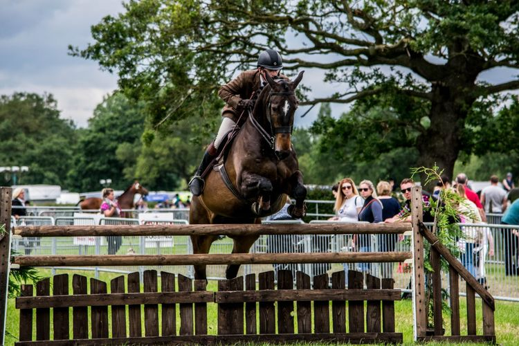 Royal County Cheshire Show