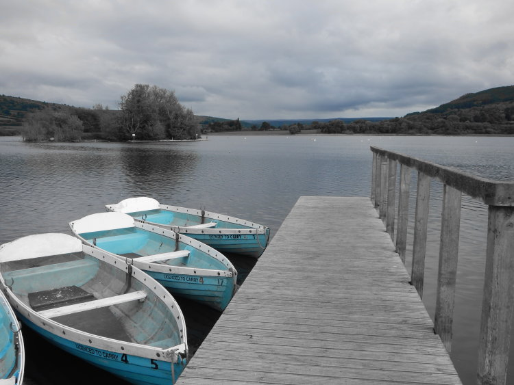 Boats resting on a lake