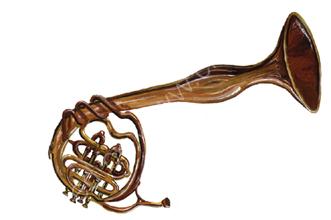 Crumple Horn