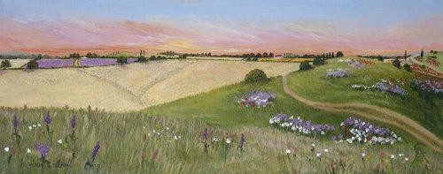 Margencel Wild Flower Meadow