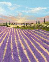 Southern Lavender