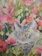 'Cat in the Poppy Meadow'