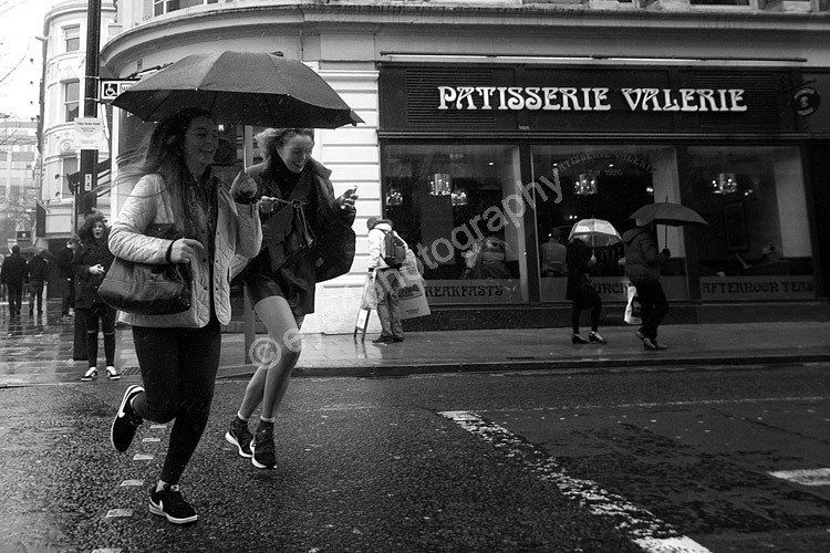 Dash of Rain