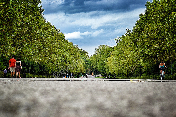Down the Park Path