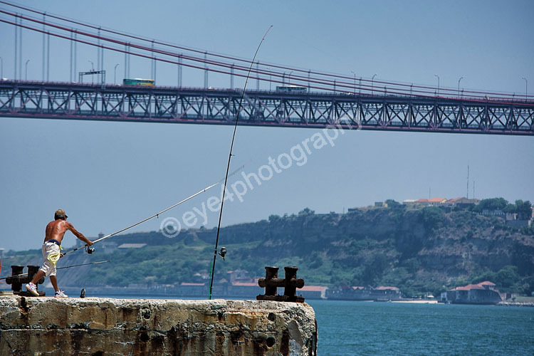 A Bridge make that fish too far