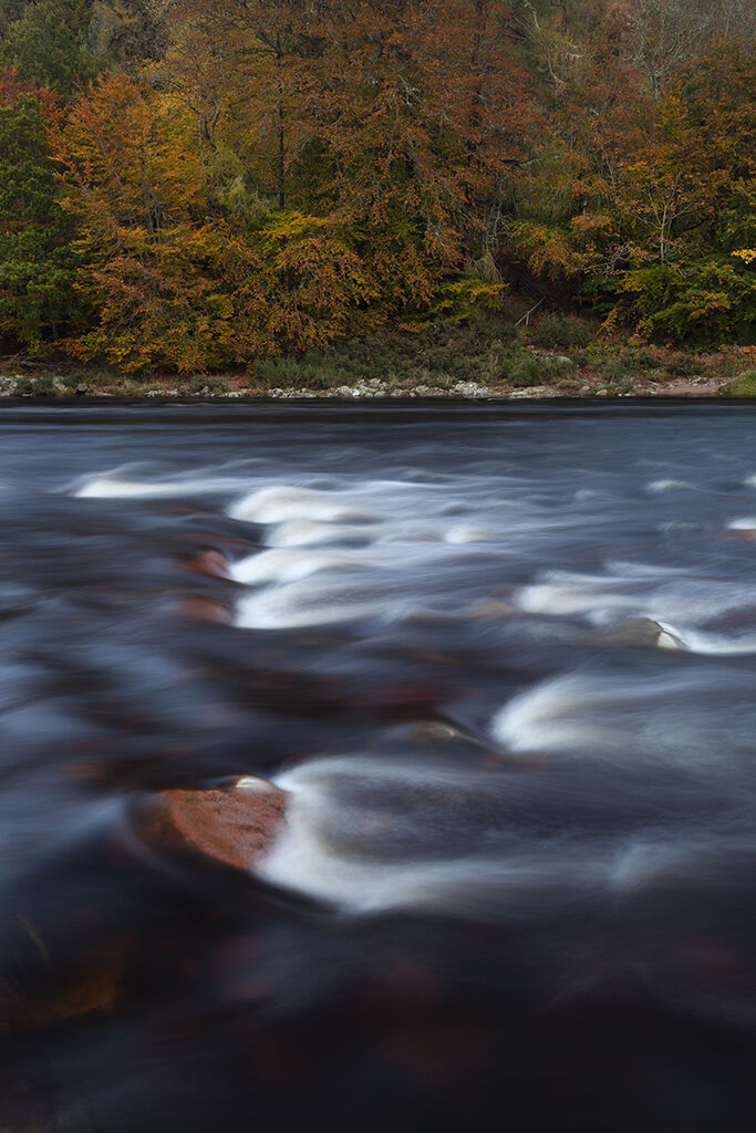autumn on the river dee
