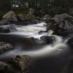 dark waters of lee