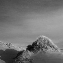 dune, forvie sands