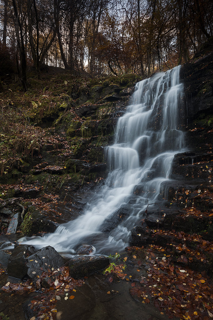 falling down, birks of aberfeldy