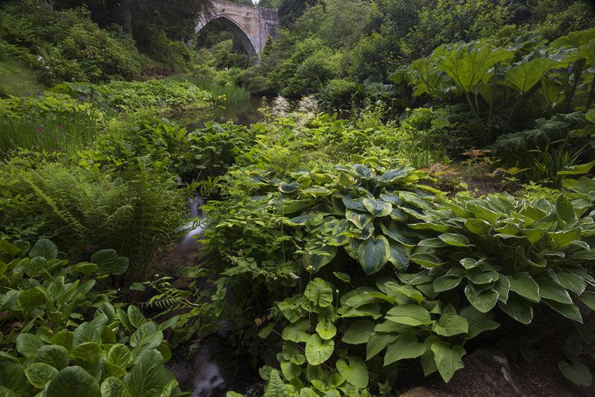 kildrummy gardens