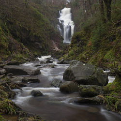 lodge forest waterfall
