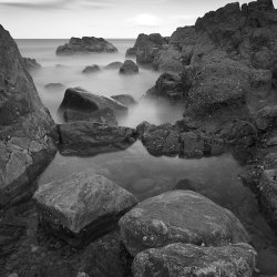 low tide, greyhope bay