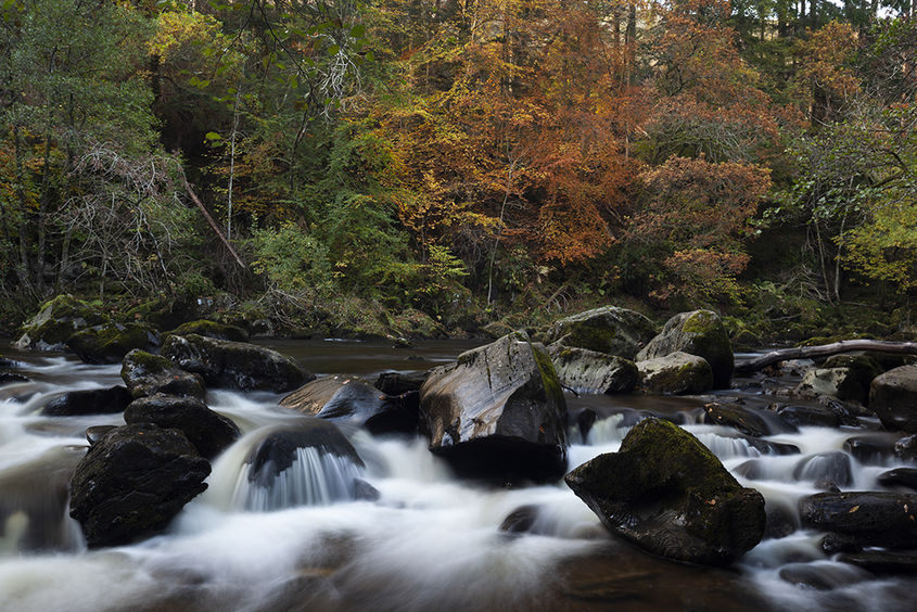 river braan in autumn