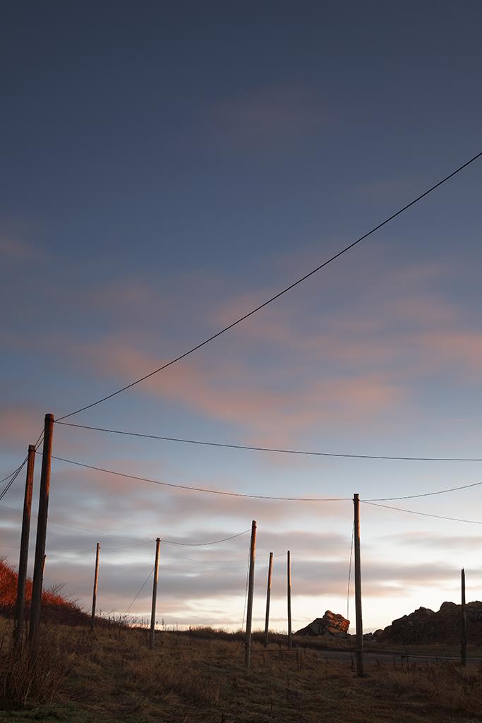sunrise, cove harbour