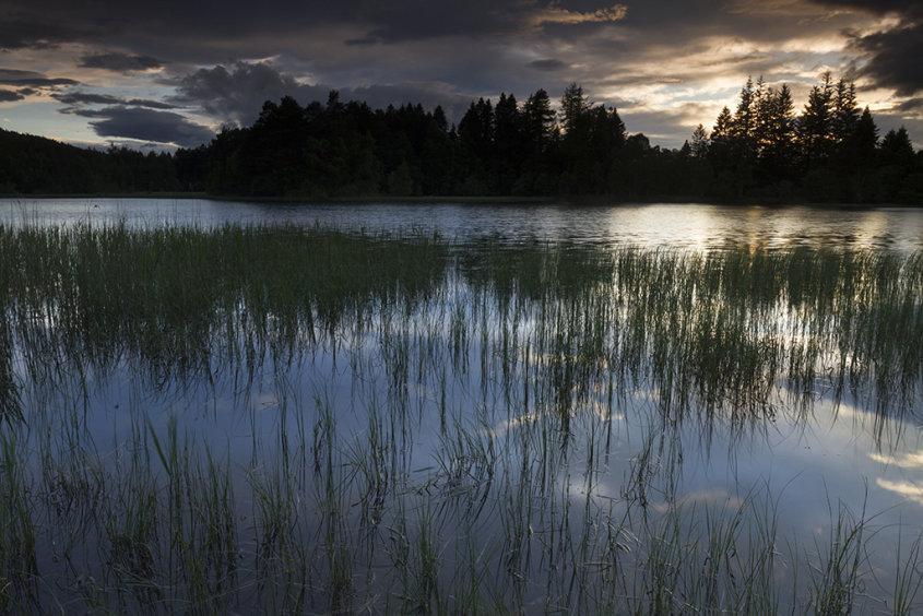 sunset, birsemore loch