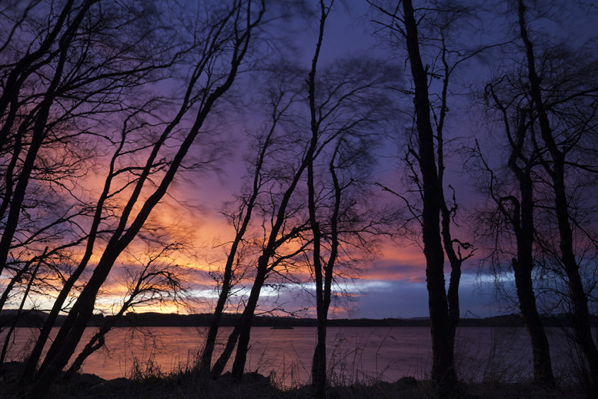sunset trees by loch of skene