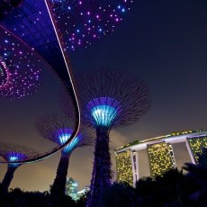 Marina Bay Sands from The Gardens by the Bay, Singapore