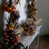 Attingham Dried Flowers