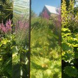 Dyffryn Fernant Garden (1)
