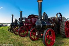 Steam Engines (1 of 1)