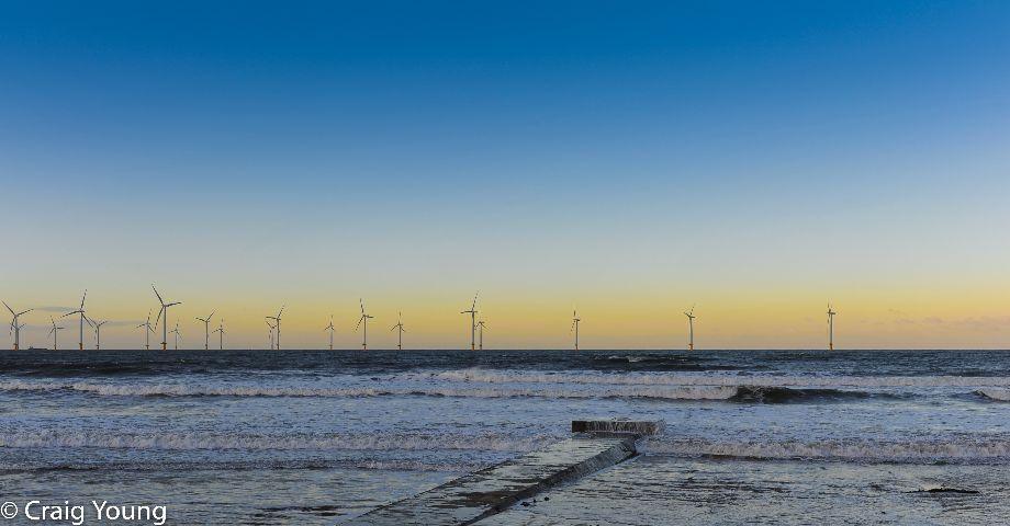 Windmills (1 of 1)
