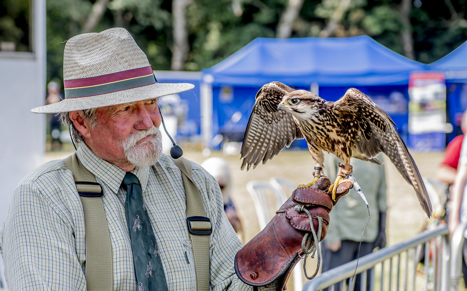 Bird of Prey with handler