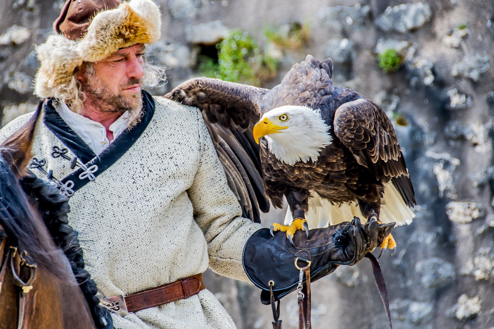 Eagle and Handler in Provins