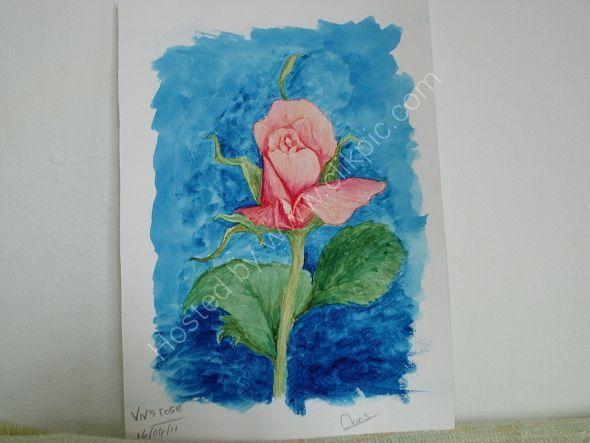 rosa para Viv