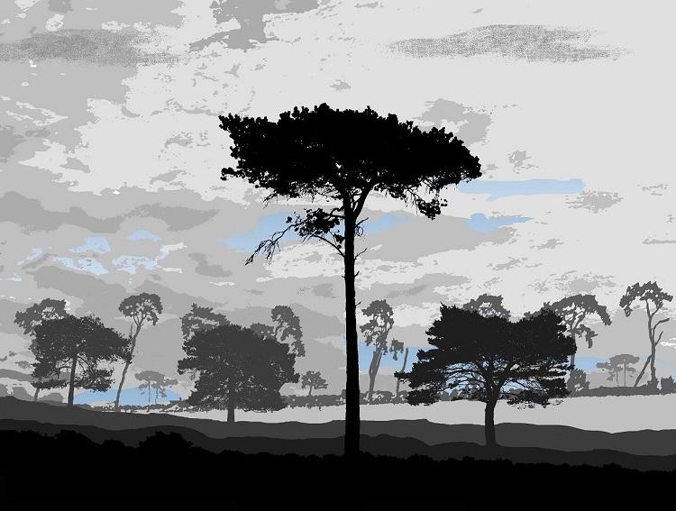 Treescape, Thetford Norfolk, Howard Temperley