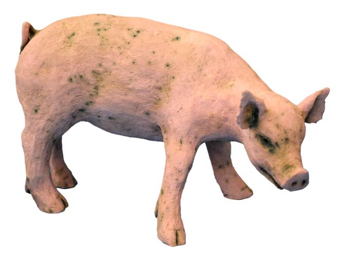 cherrill edgington little pig