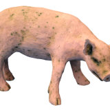 cherrill edgington little pig