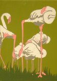 Jan Motley-Resting Flamingo
