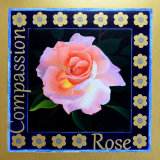 Rose, Compassion, Julia Richardson