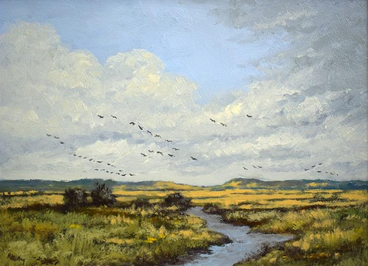 richard motley over norfolk marshland