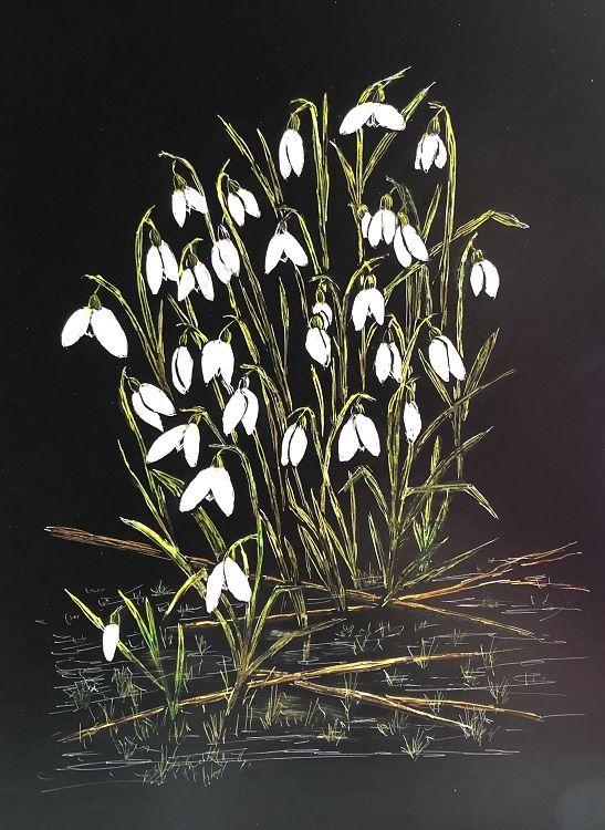 Snowdrops, Eleanor Alison
