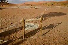 The way to Dead Vlei