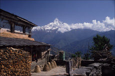 En route to Annapurna Base Camp, West Nepal