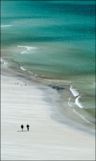 Saunders Island Beach, Falkland Islands