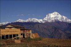 Farm below Dhaulagiri in West Nepal