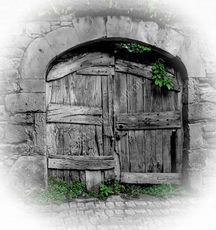 French Door No.2