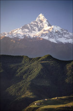 Himalayan Backdrop.  Machapuchare, the Fishtail Mountain from Naudanda